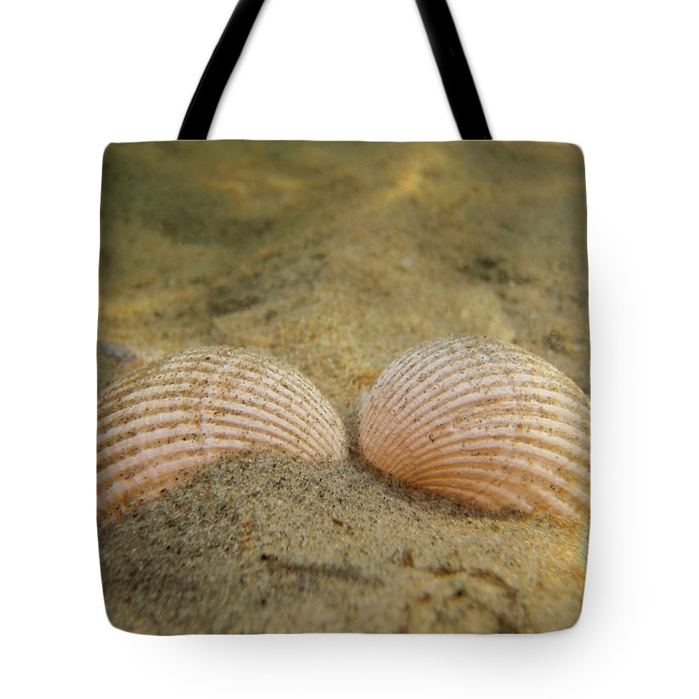 Shell Tote Bag featuring the photograph Sleeping Mermaid by Are Lund