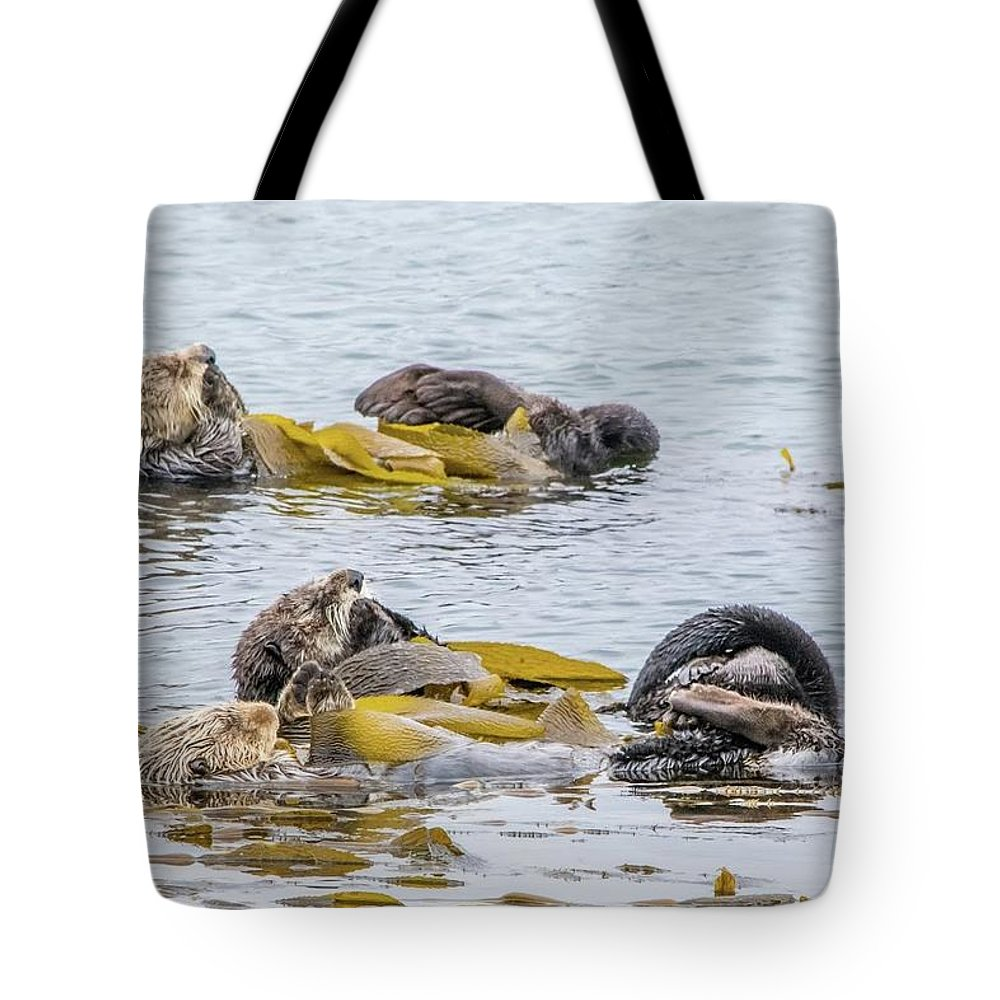Otter Tote Bag featuring the photograph Sleeping Otters by Eric Strickland