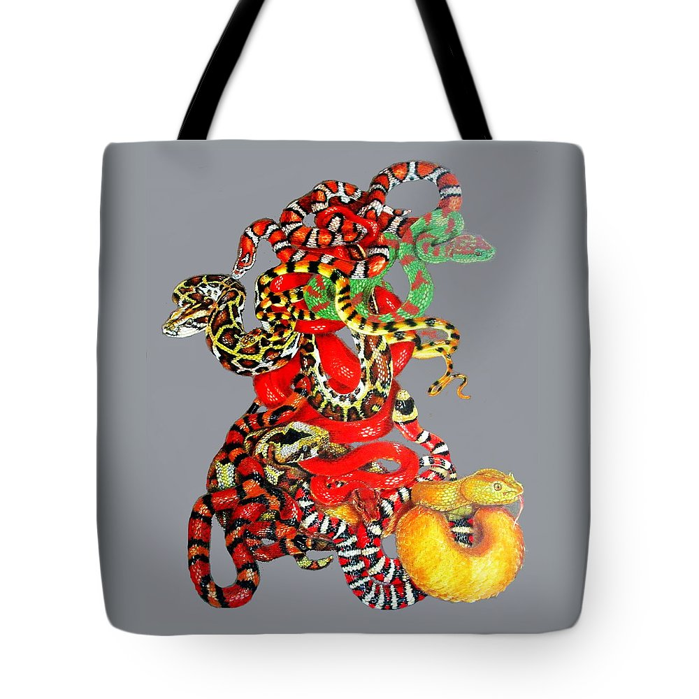Reptile Tote Bag featuring the drawing Slither by Barbara Keith