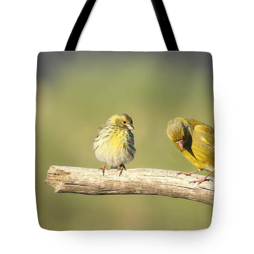 Decorative Tote Bag featuring the photograph Small And Large by Heike Hultsch
