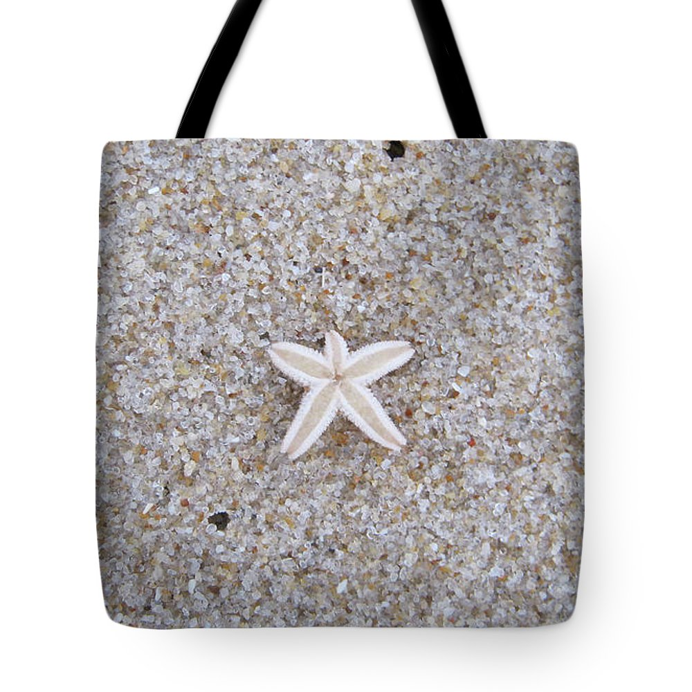 Sylt Tote Bag featuring the photograph Small Star Fish by Heidi Sieber