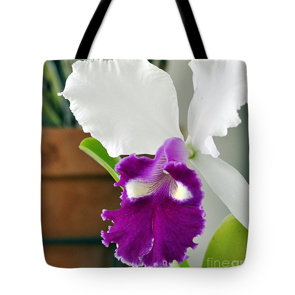 Clay Tote Bag featuring the photograph Smile by Clayton Bruster