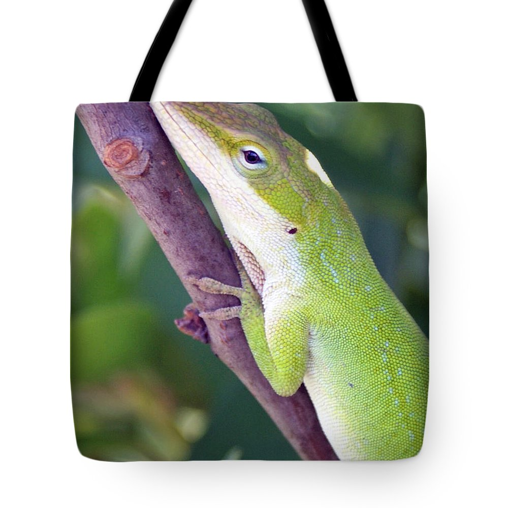 Animal Tote Bag featuring the photograph Smile by Shelley Jones