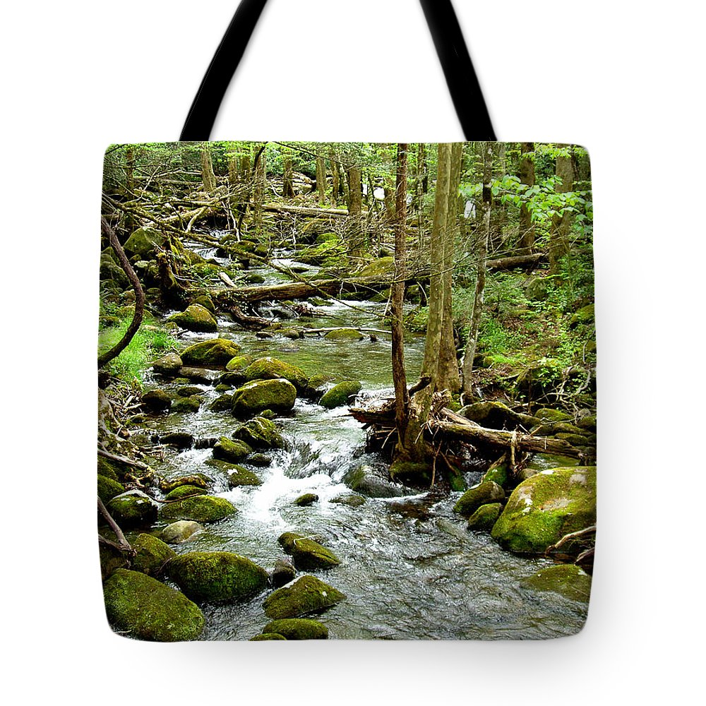 Smoky Mountains Tote Bag featuring the photograph Smoky Mountain Stream 1 by Nancy Mueller