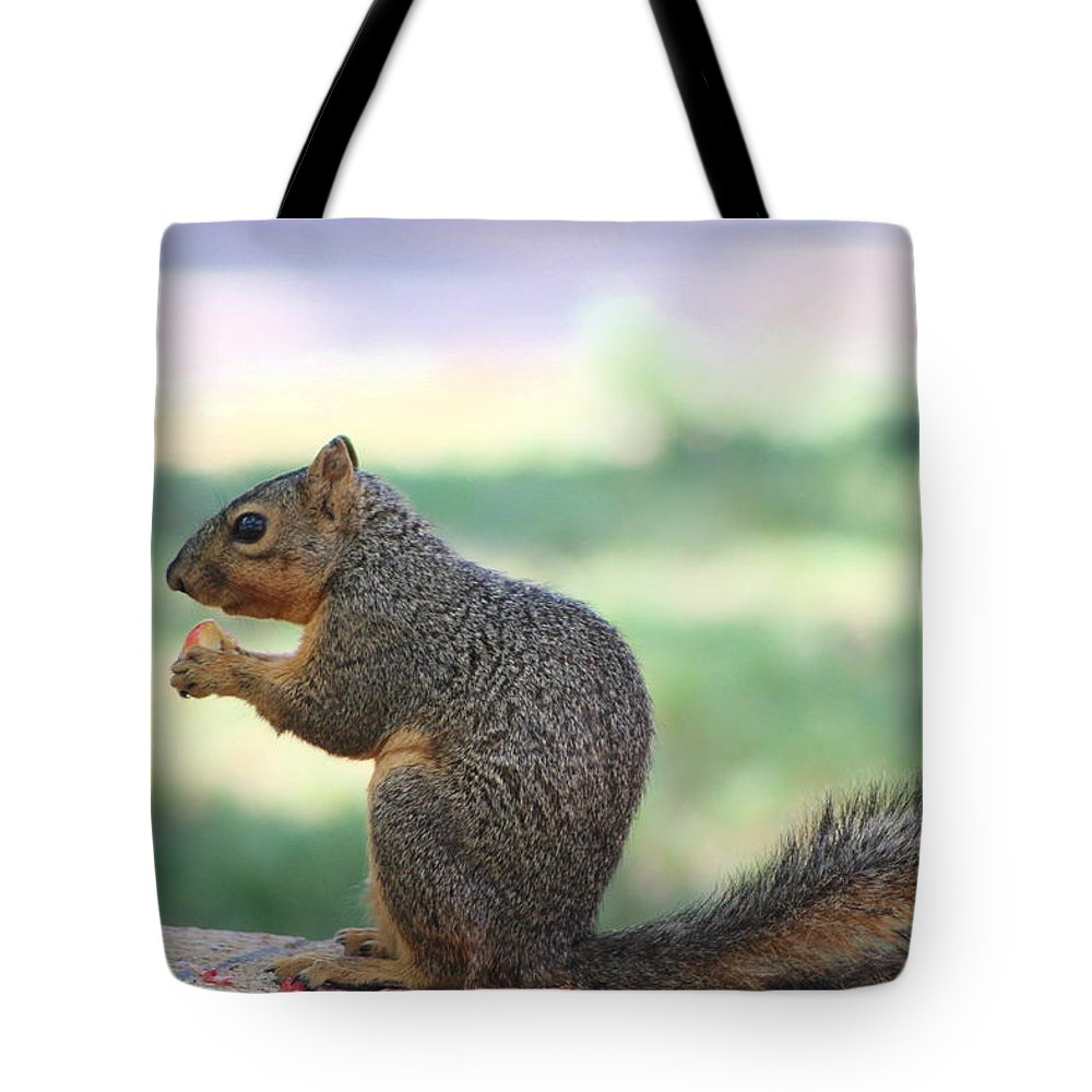 Squirrel Tote Bag featuring the photograph Snack Time by Colleen Cornelius