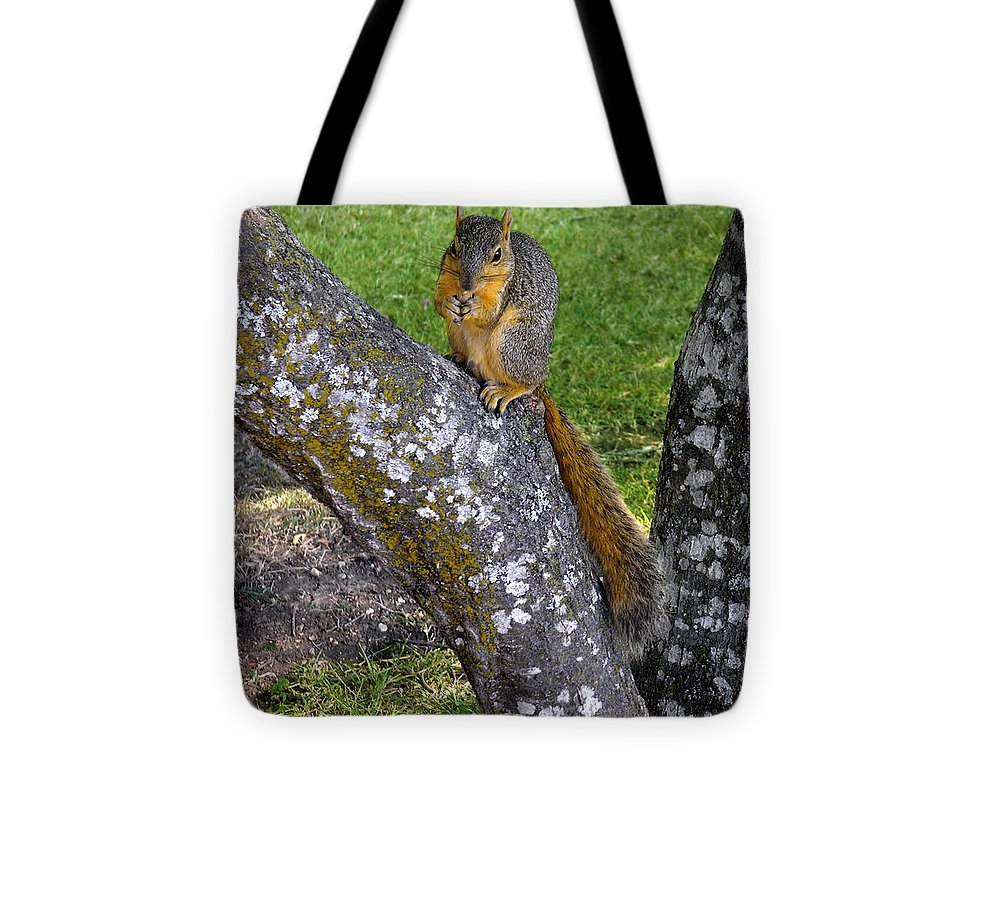 Nature Tote Bag featuring the photograph Snack Time by Lucyna A M Green