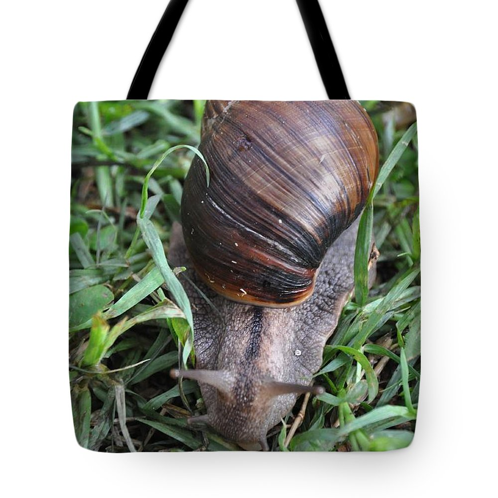 Snail Tote Bag featuring the photograph Snail by Rachel Young