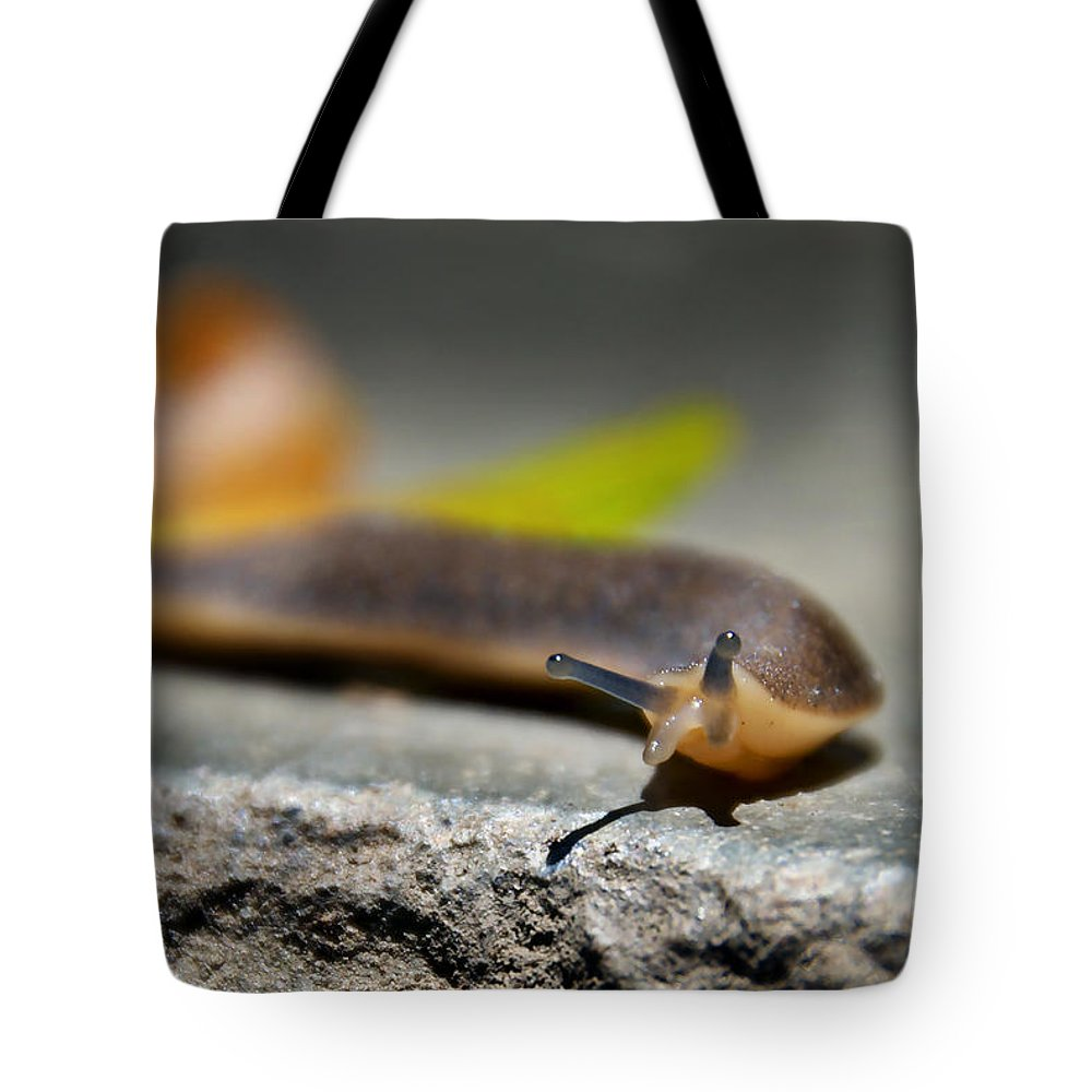 Snail Tote Bag featuring the photograph Snail Searching For Shell by Bibi Rojas