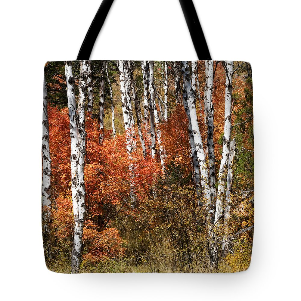 Wyoming Tote Bag featuring the photograph Snake River Canyon by Sandra Bronstein