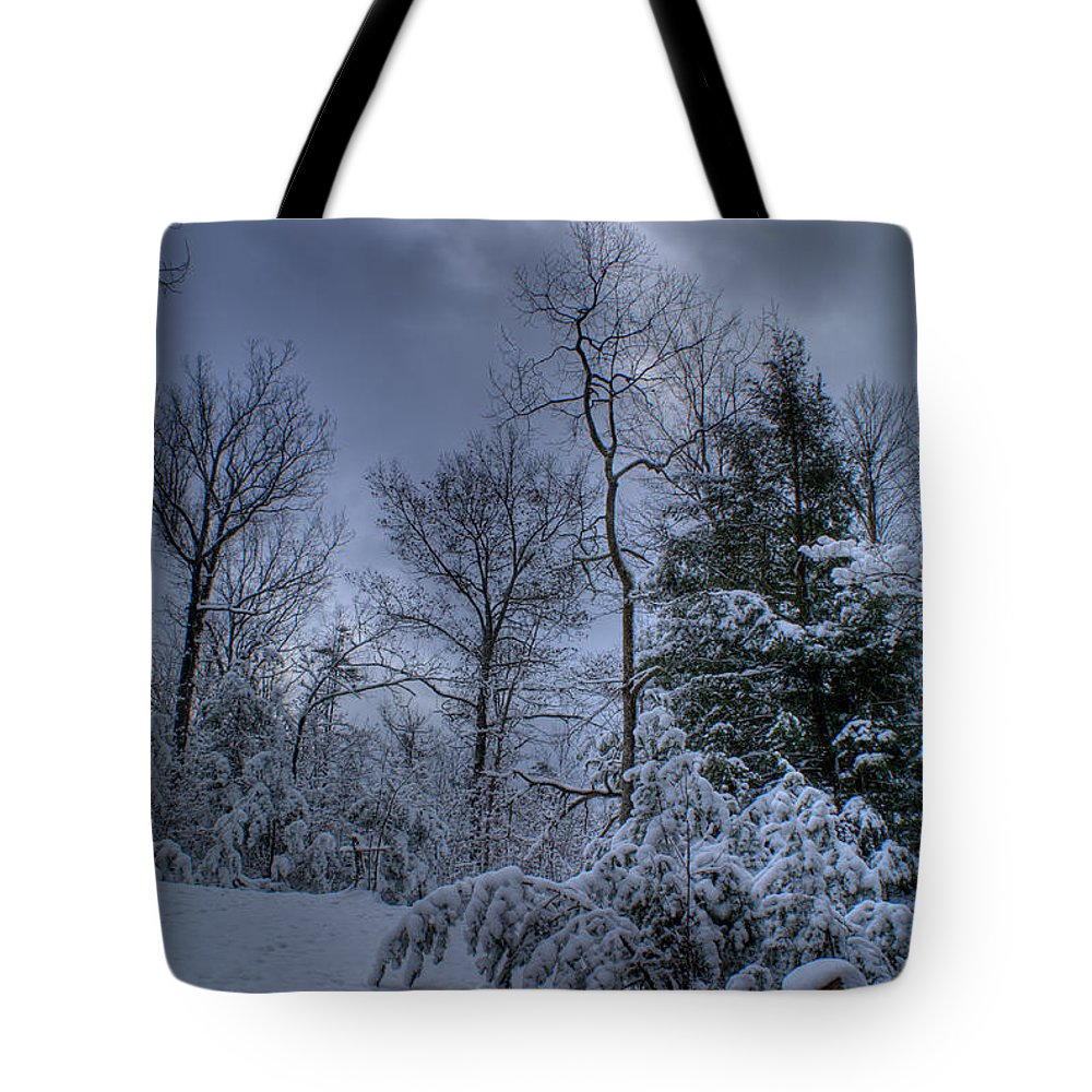 Errie Tote Bag featuring the photograph Snow At Sunrise by Douglas Barnett