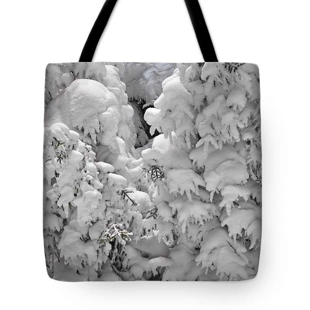 Snow Tote Bag featuring the photograph Snow Coat by Alex Grichenko