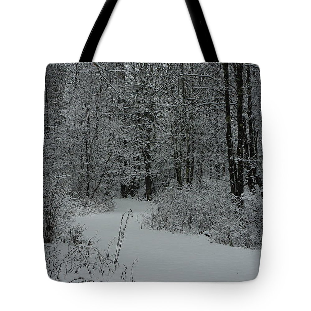 Snow Tote Bag featuring the photograph Snow Covered Path Into The Woods by Alice Markham