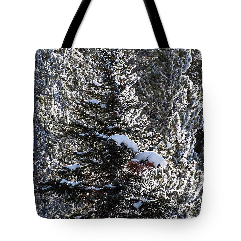 Yellowstone National Park Tote Bag featuring the photograph Snow Flocked Pines One by Bob Phillips