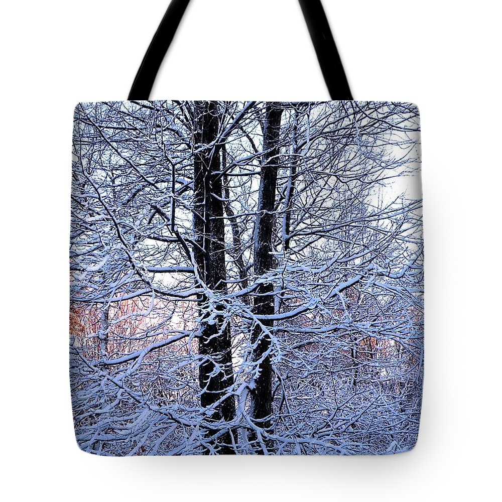 Tree Tote Bag featuring the photograph Snow Maple Morning Landscape by Dave Martsolf