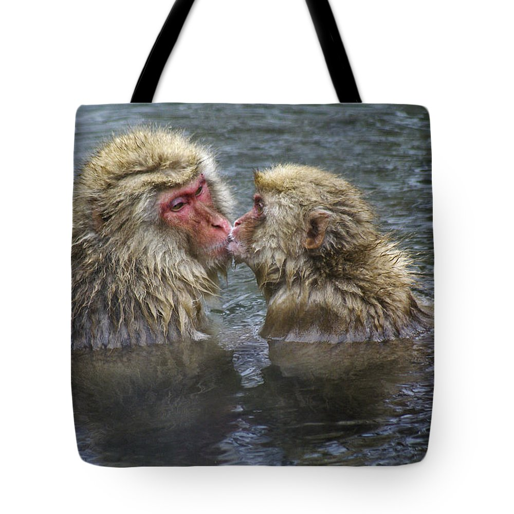 Snow Monkey Tote Bag featuring the photograph Snow Monkey Kisses by Michele Burgess