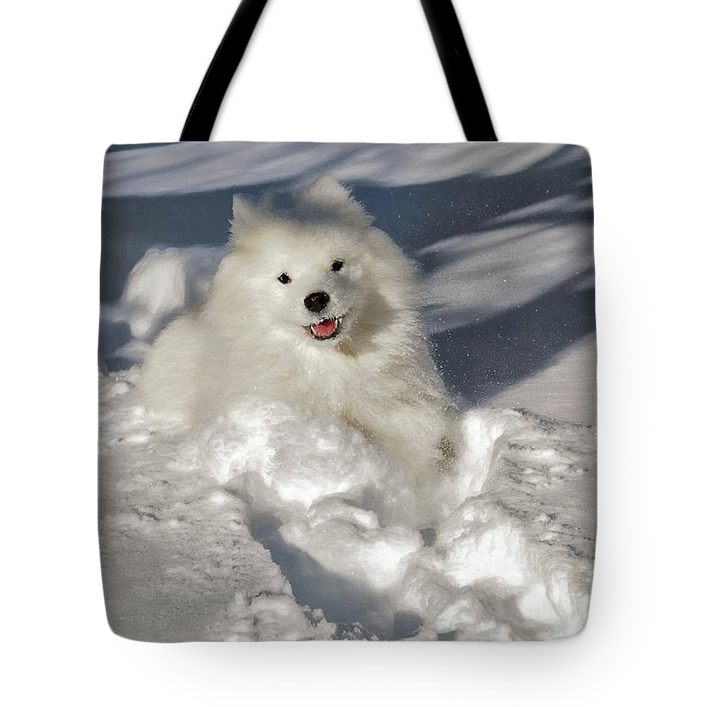 Dog Tote Bag featuring the photograph Snow Queen by Lois Bryan