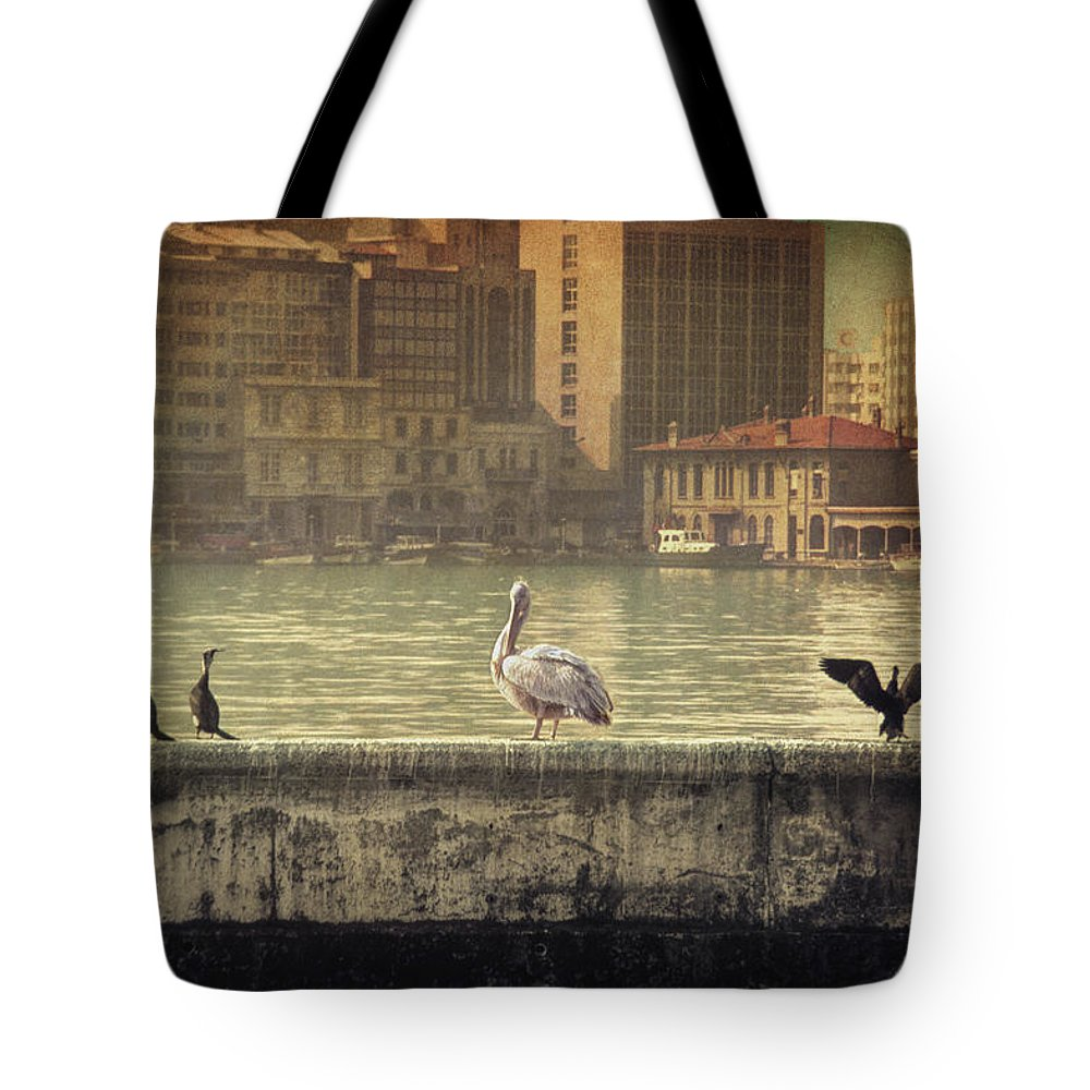 Birds Tote Bag featuring the photograph Snow White And The Seven Dwarfs by Zapista