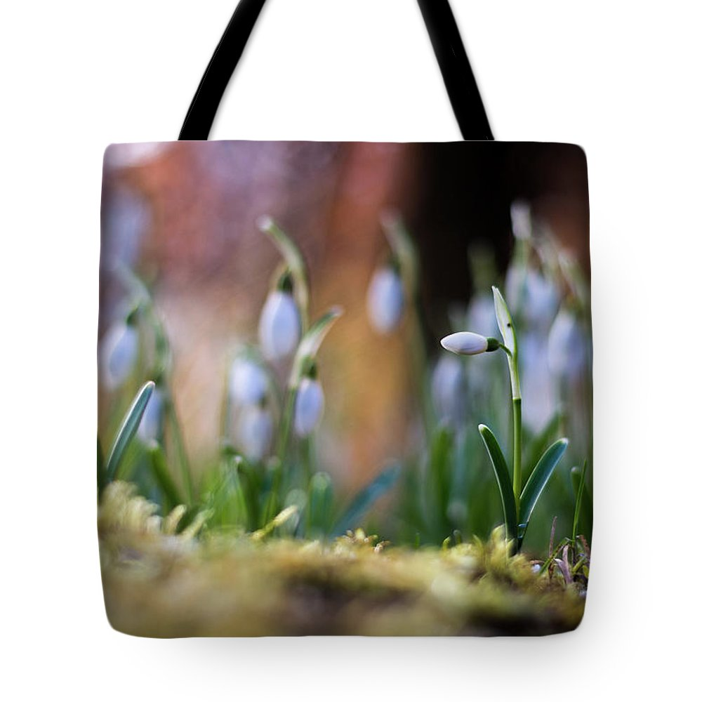 Nature Tote Bag featuring the photograph Snowdrops by Silviu Dascalu