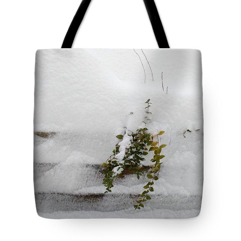 Nature Tote Bag featuring the photograph Snowfall by Anita Adams