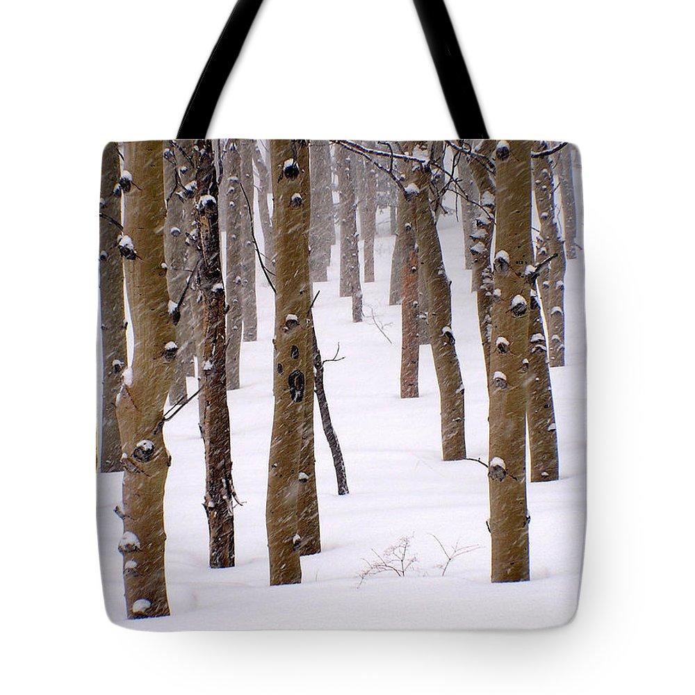 Aspen Tote Bag featuring the photograph Snowy Aspen by Carol Milisen