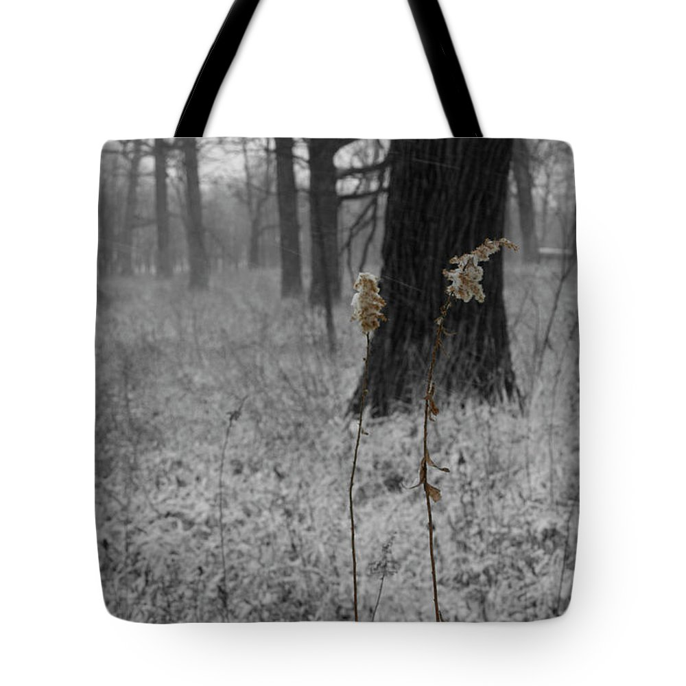 Snow Tote Bag featuring the photograph Snowy Dance by Dylan Punke