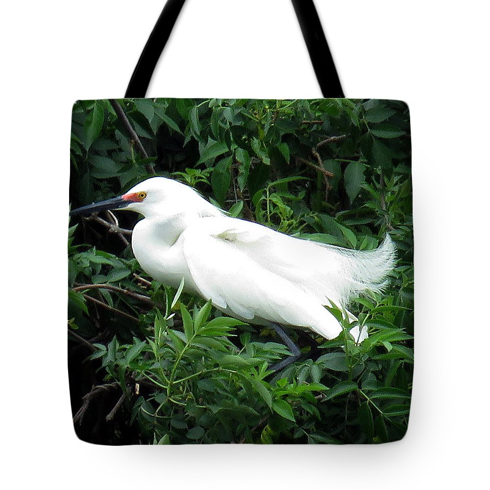 Rose Tote Bag featuring the photograph Snowy Egret 12 by J M Farris Photography