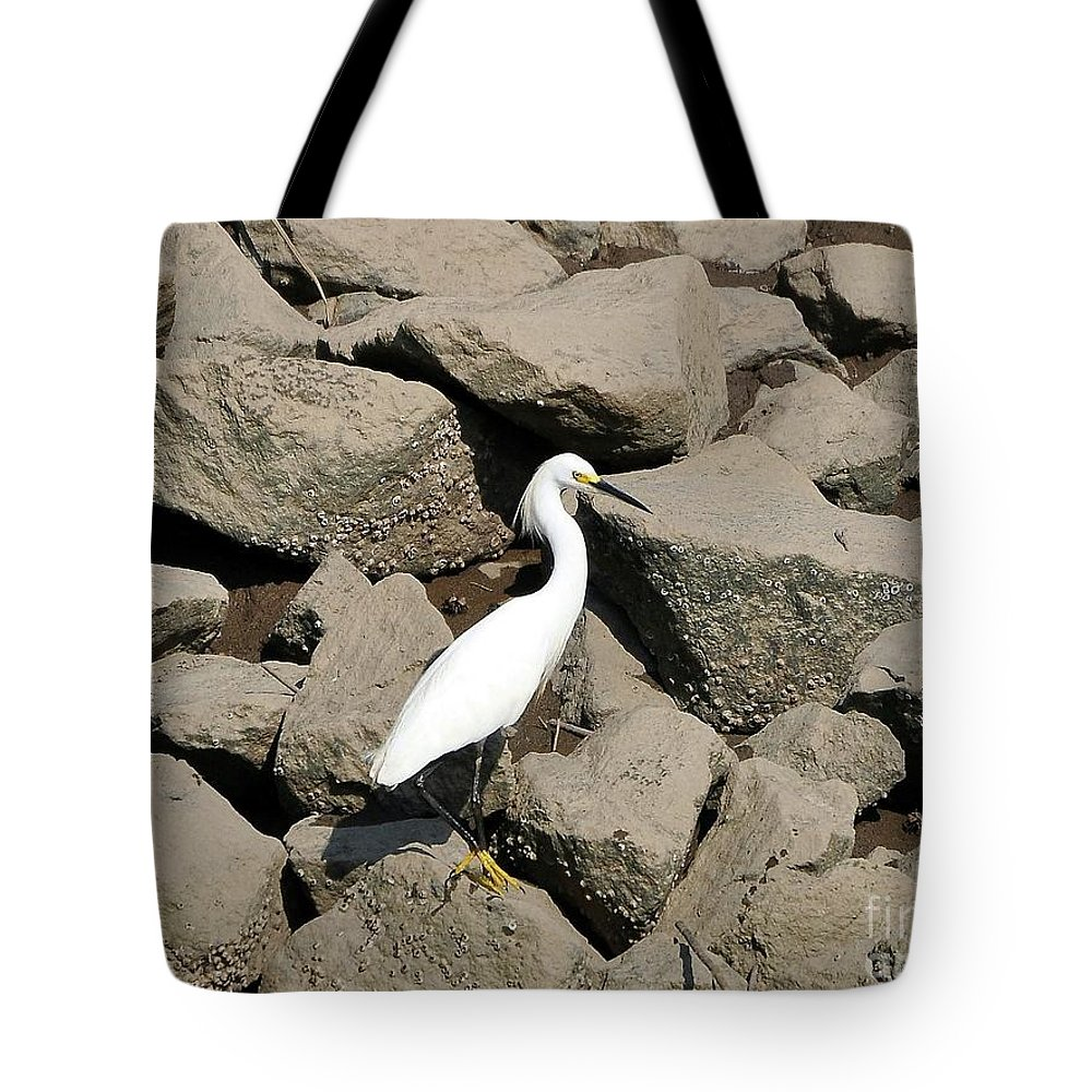 Snowy Egret Tote Bag featuring the photograph Snowy Egret On The Rocks by Al Powell Photography USA