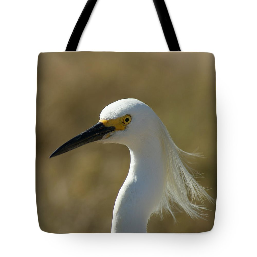 Birds Tote Bag featuring the photograph Snowy Egret Profile 1 by Ernie Echols