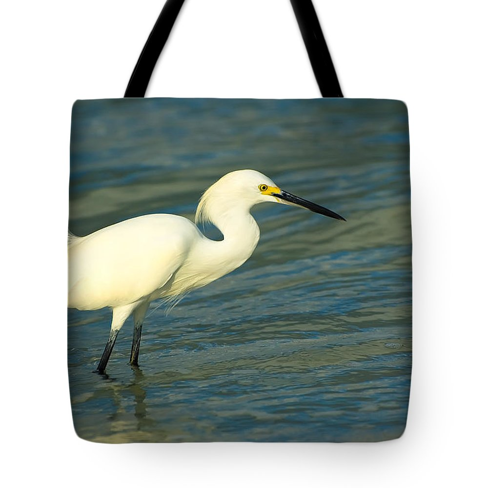 Animal Tote Bag featuring the photograph Snowy Egret by Rich Leighton