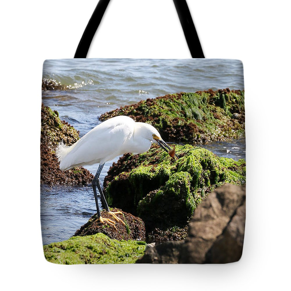 Nature Tote Bag featuring the photograph Snowy Egret Series 2 1 Of 3 The Catch by David Mayeau