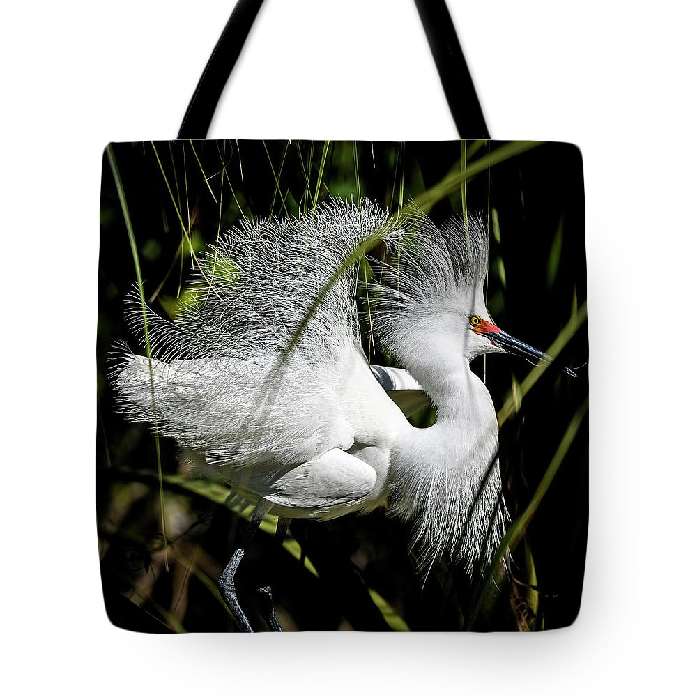 Snowy Egret Tote Bag featuring the photograph Snowy Egret by Steven Sparks
