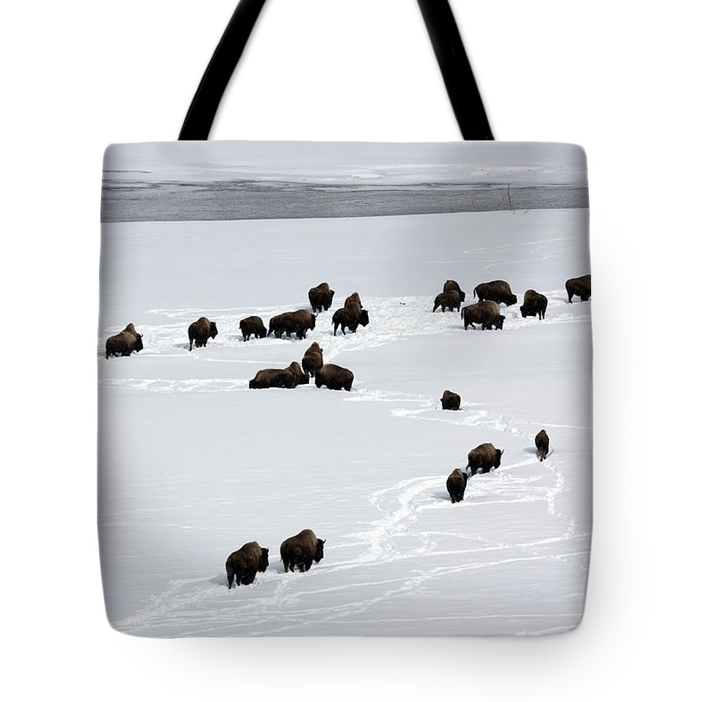 Tote Bag featuring the photograph Snowy Migration II by Mary Haber