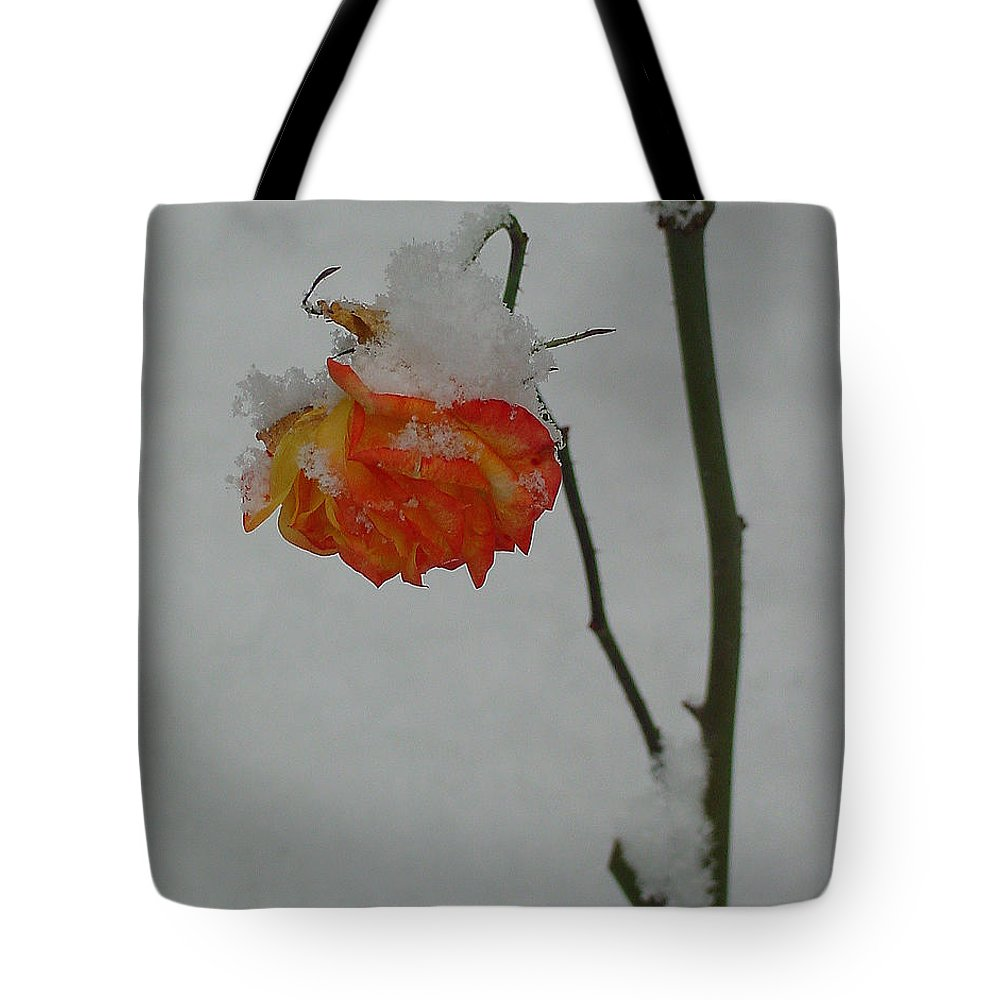 Flower Tote Bag featuring the photograph Snowy Orange Rose by Shirley Heyn