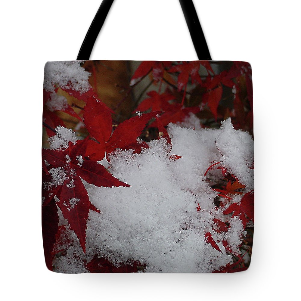 Red Tote Bag featuring the photograph Snowy Red Maple by Shirley Heyn