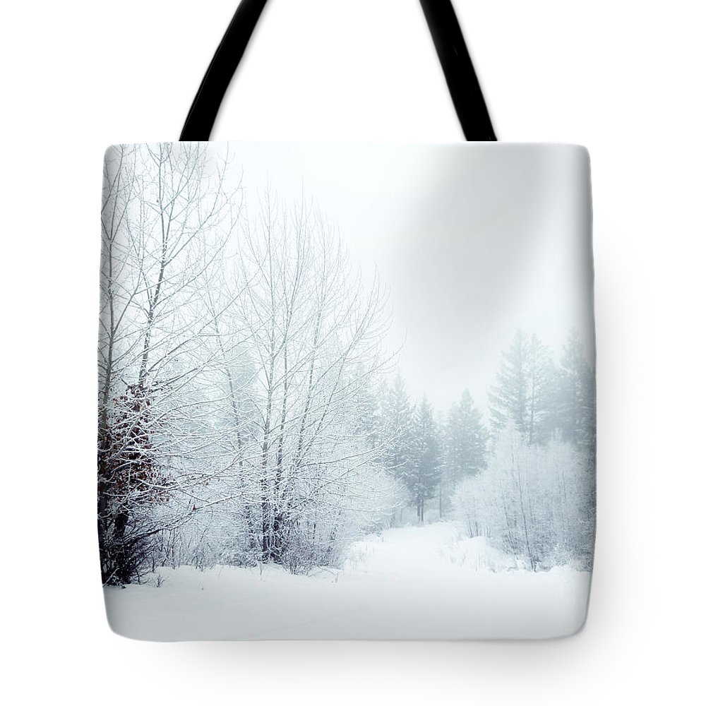 Snow Tote Bag featuring the photograph Snowy Sunday by Tara Turner