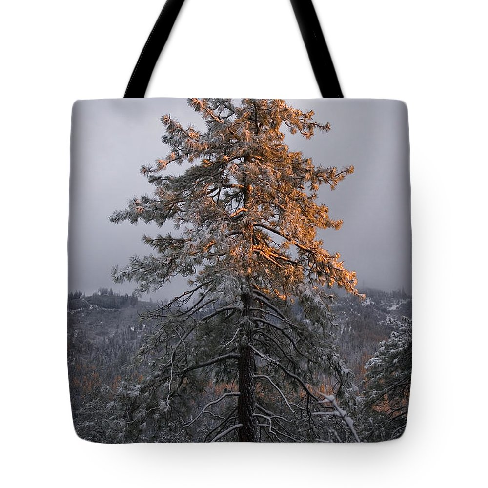 Christmas Tote Bag featuring the photograph Snowy Sunset by Jim And Emily Bush
