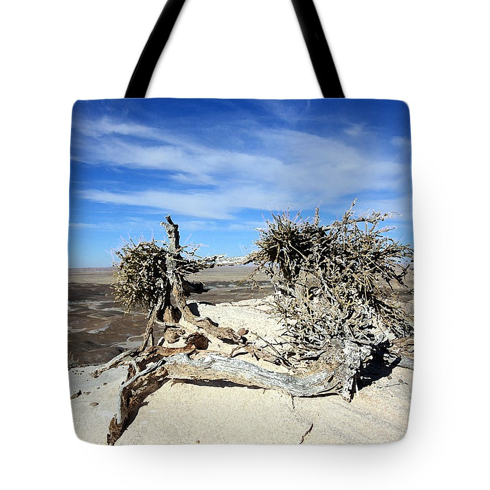 Landscape Tote Bag featuring the photograph So Dry by Mary Haber