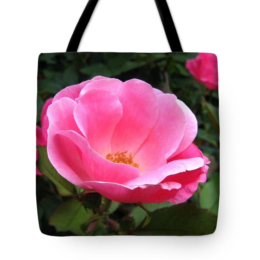 Flower Tote Bag featuring the photograph So Pretty by Rhonda Barrett