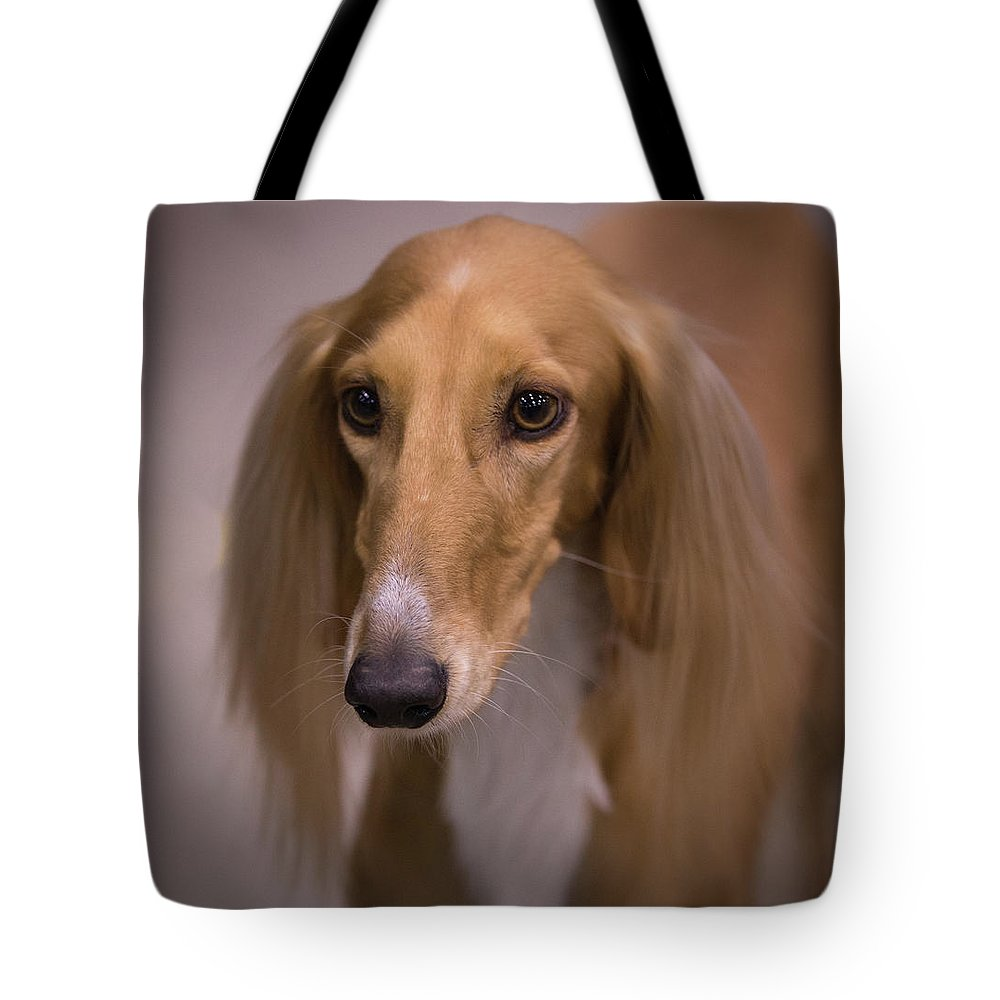 Saluki Tote Bag featuring the photograph Soft And Silky by Jeff West
