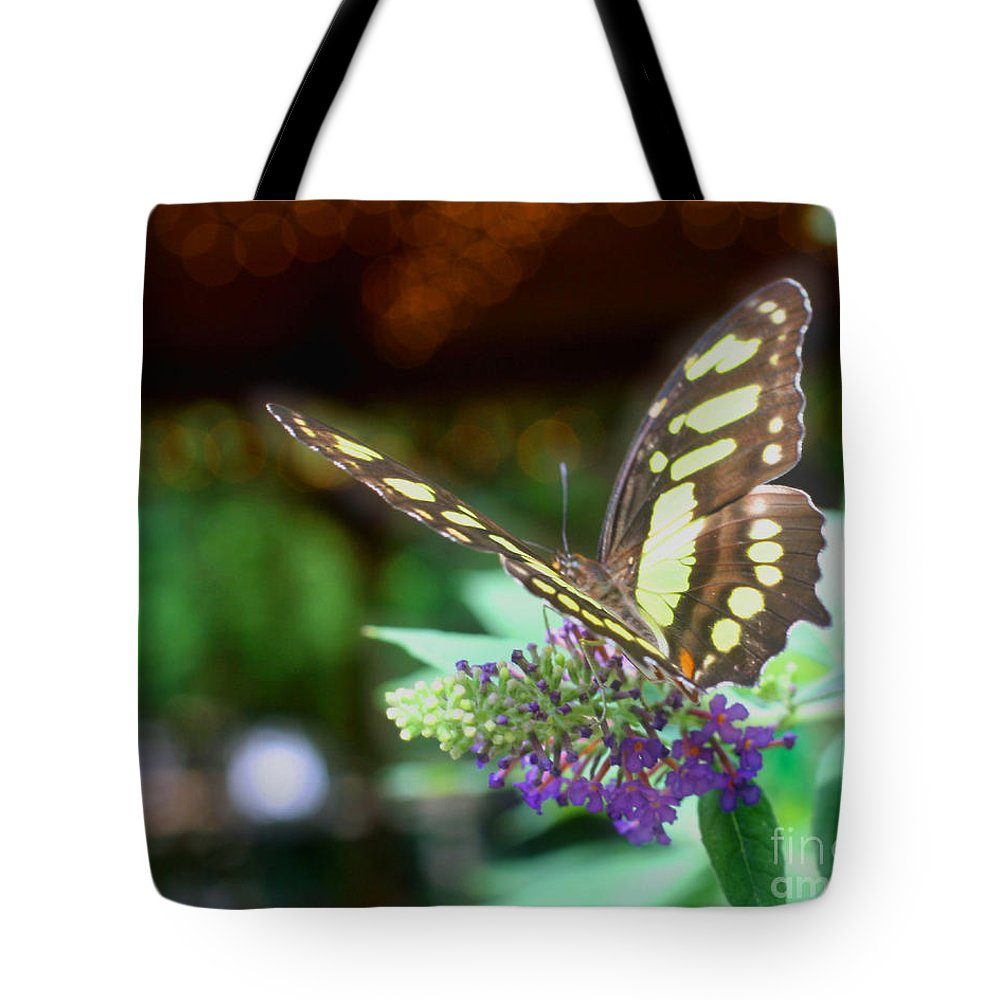 Butterfly Tote Bag featuring the photograph Soft Butterfly by Smilin Eyes Treasures