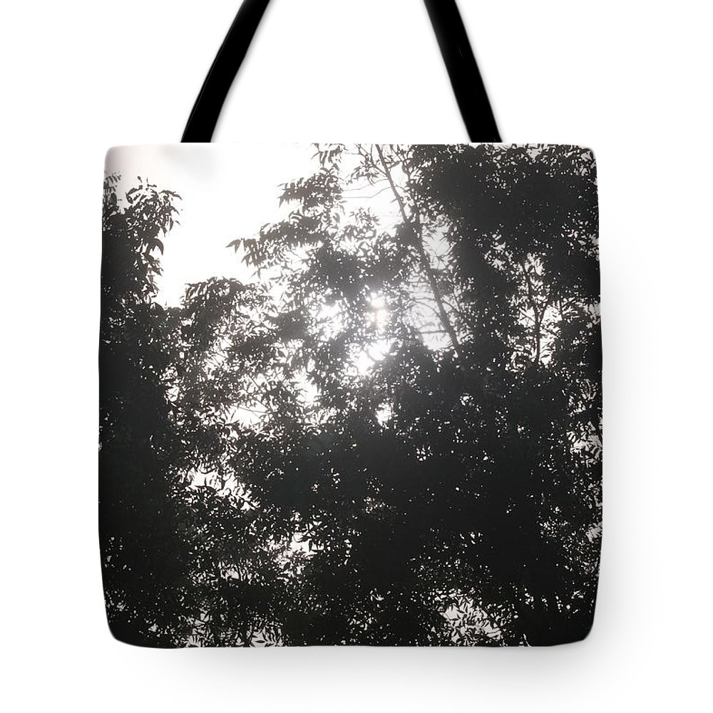 Light Tote Bag featuring the photograph Soft Light by Nadine Rippelmeyer