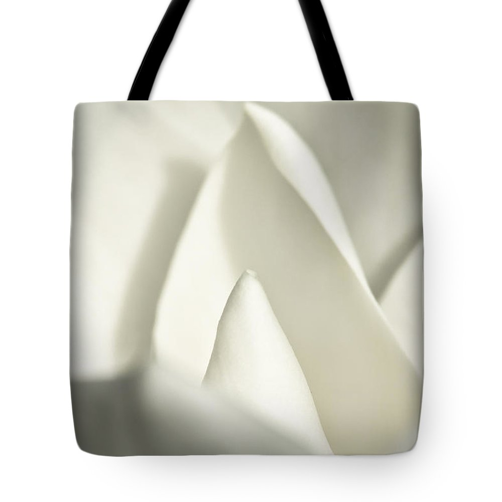 Magnolia Tote Bag featuring the photograph Soft Magnolia by Christopher Holmes
