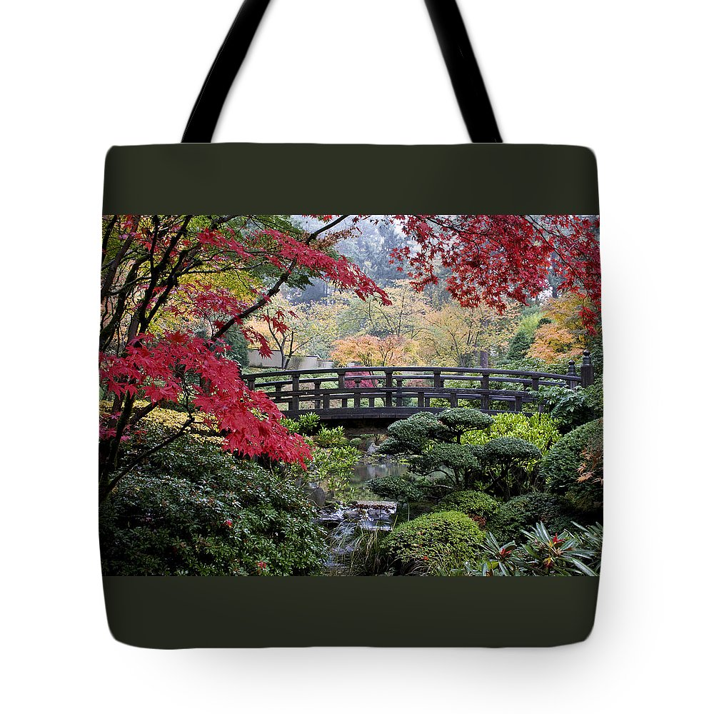 Soft Morning Light Tote Bag featuring the photograph Soft Morning Light by Wes and Dotty Weber