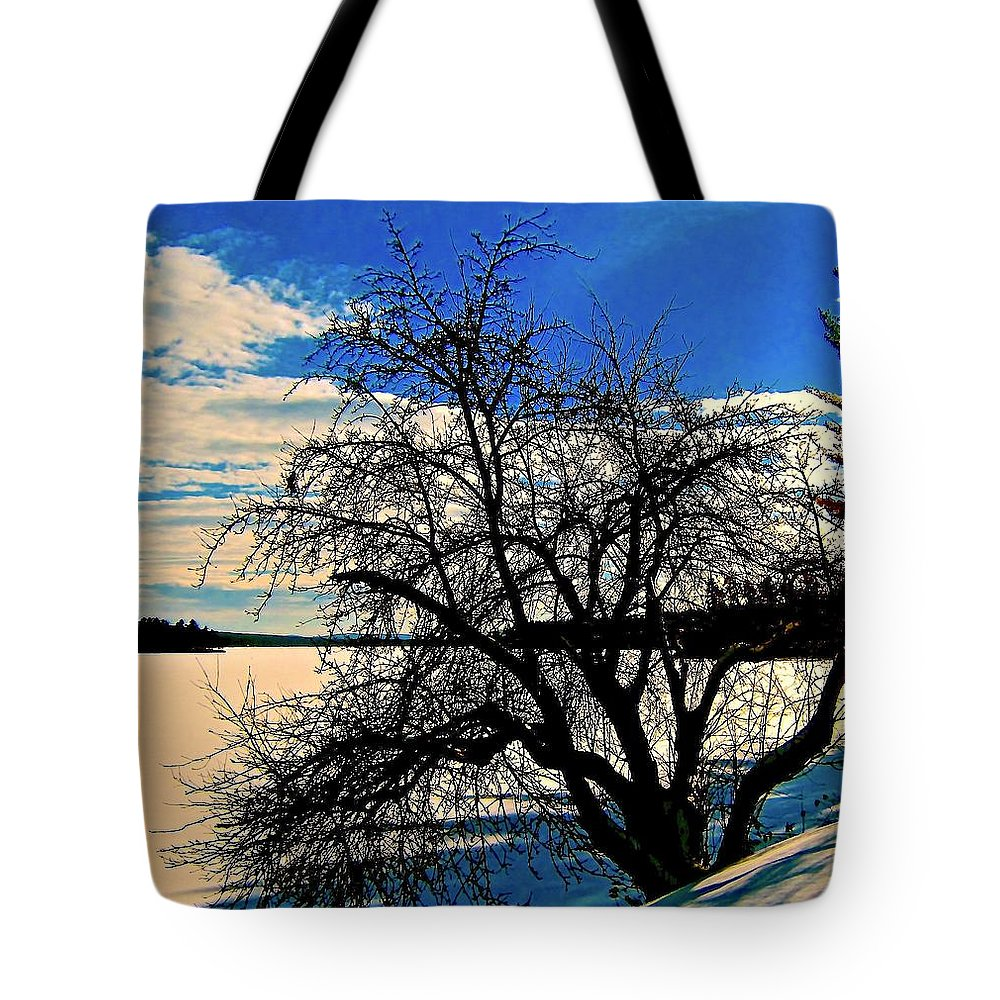 Tote Bag featuring the photograph Solace On Silver Lake by Elizabeth Tillar