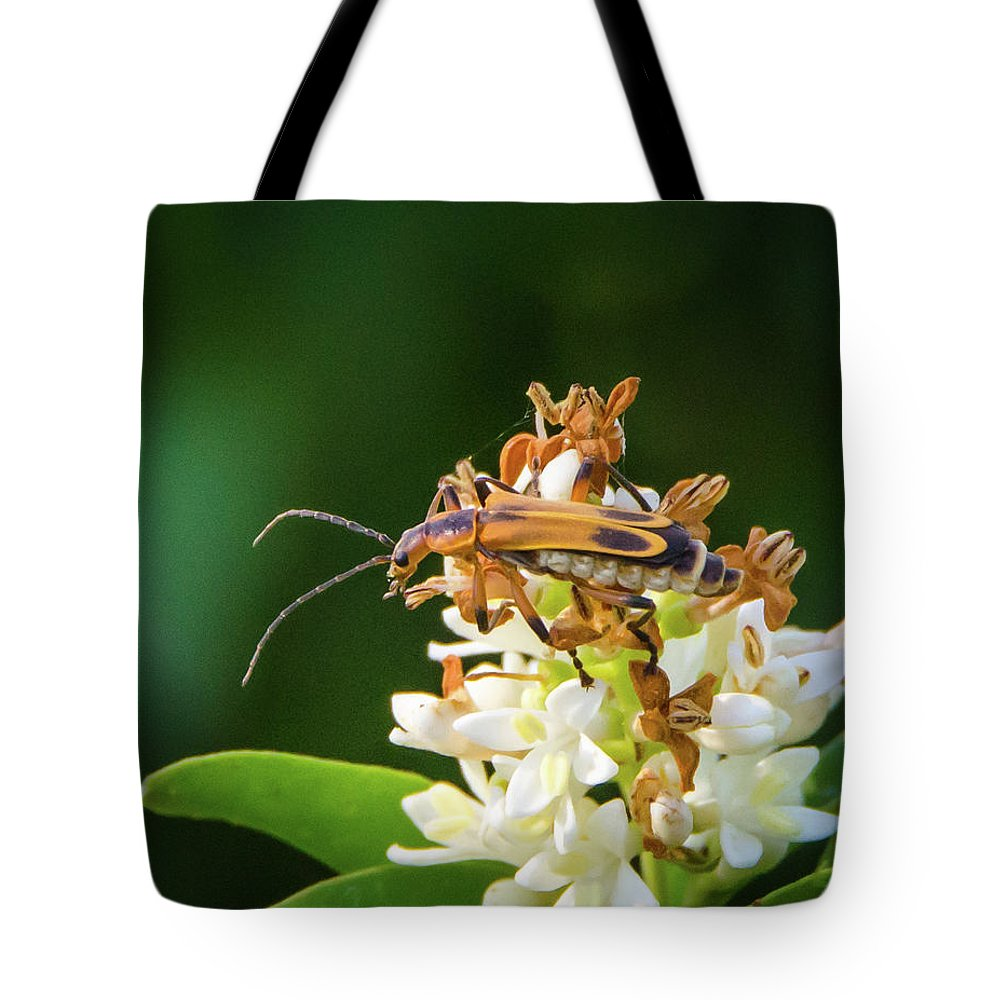 Nature Tote Bag featuring the photograph Soldier Beetle by Steve Marler
