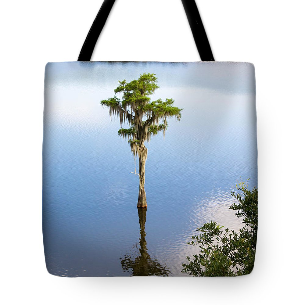 Nature Tote Bag featuring the photograph Solitary by Andrea Anderegg