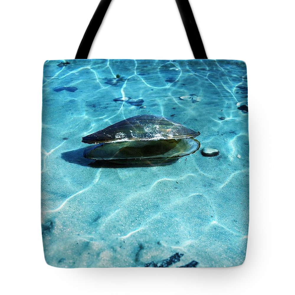 Shells Tote Bag featuring the photograph Solitude by Carlos Avila