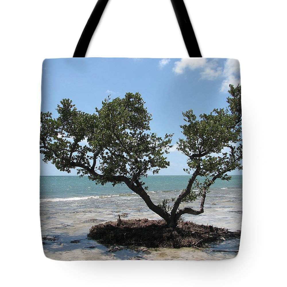 Beach Tote Bag featuring the photograph Solitude by Stacey May