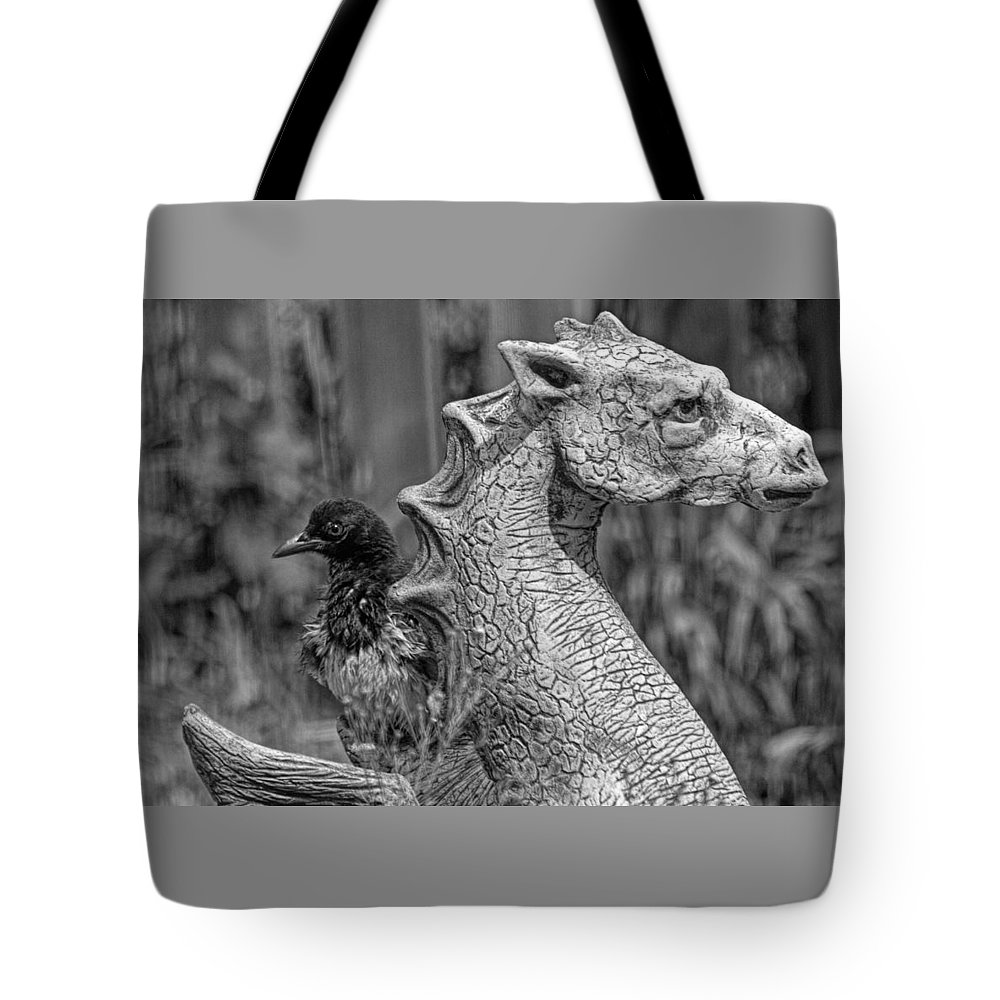 Magpie Tote Bag featuring the photograph Some day I... by Alana Thrower