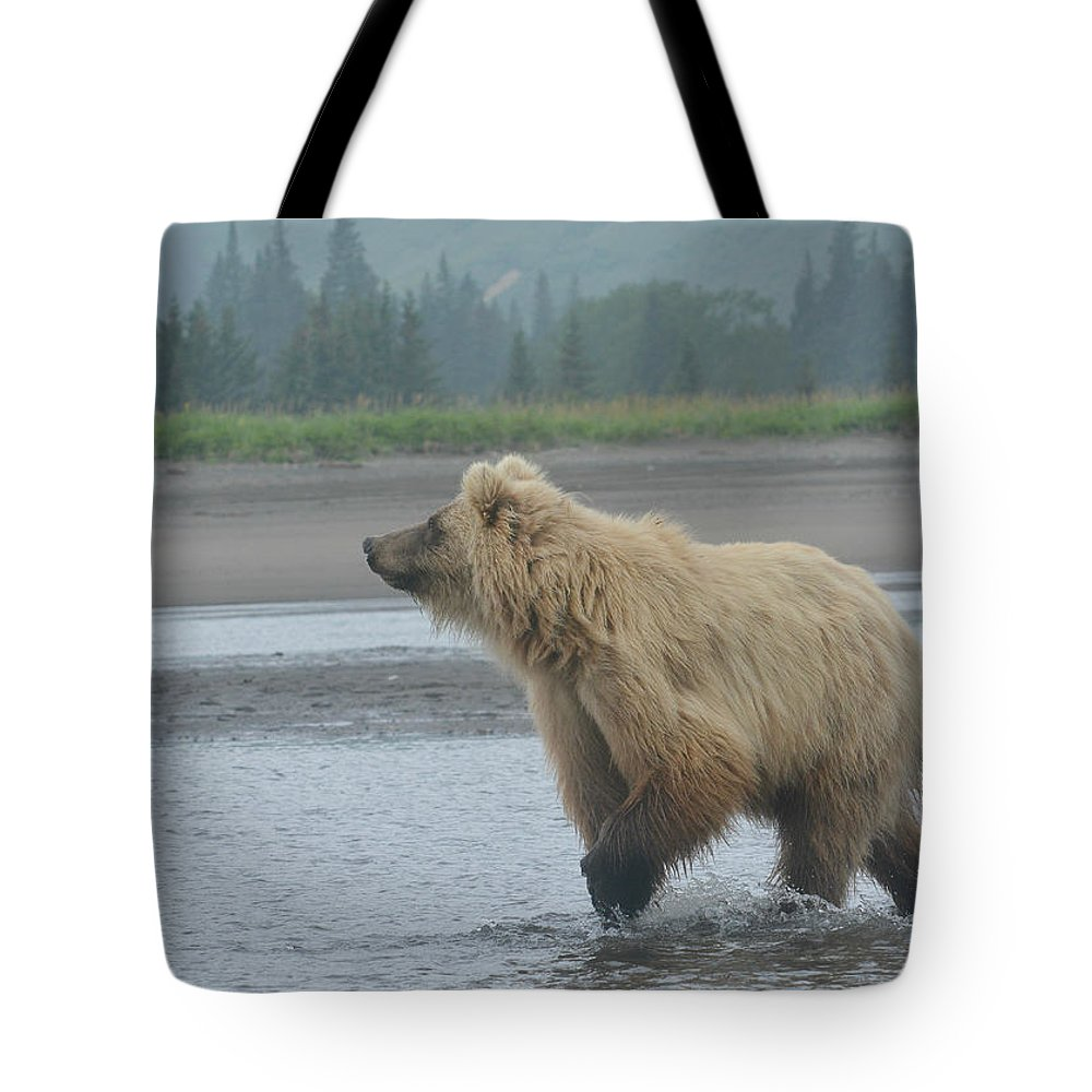 Grizzly Bear Tote Bag featuring the photograph Something In The Air by Fraida Gutovich